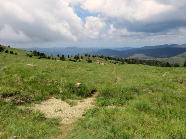 L'inizio del sentiero di discesa dal Colle Gandolfi