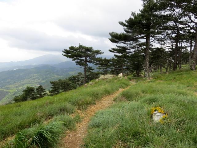 Foto alta via dei monti liguri piani di praglia passo for Piani di coperta chiusi