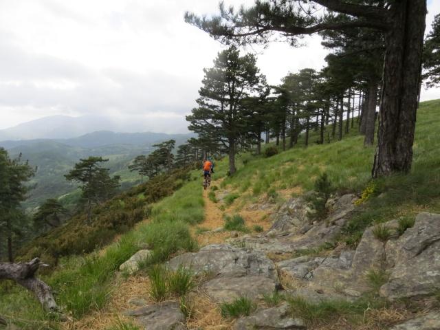 Sentiero dal Colle Gandolfi al Passo del Veleno