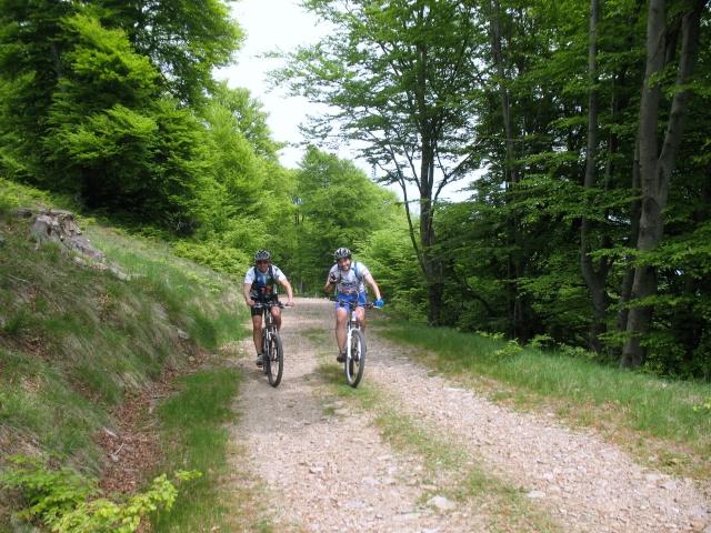 Salita all'Alpe di Torricella
