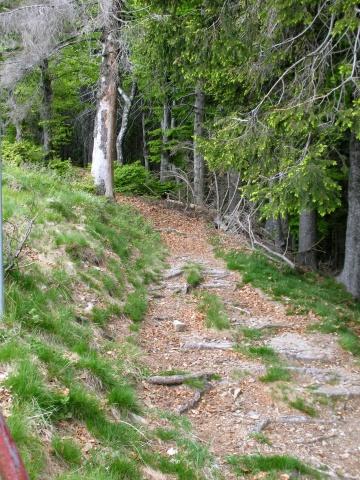 Single-track dall'Alpe di Pol