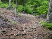 Single-track dall'Alpe di Pol