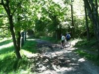 Nei boschi tra Colazza e Fosseno