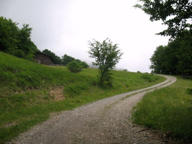 Salita al Monte Boglelio