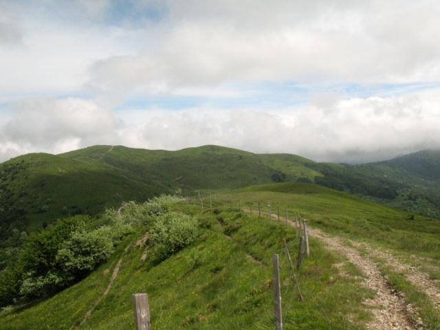 Strada proveniente dal Monte Chiappo, presente sullo sfondo