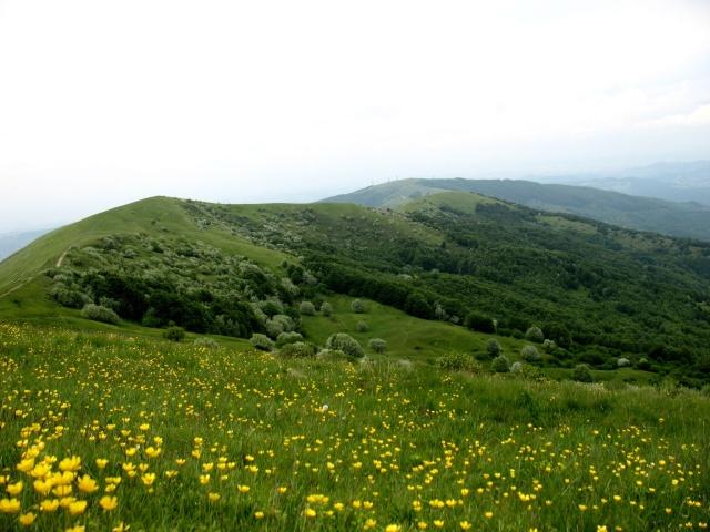 Monte Cosfrone, Monte Panà e Monte Giarolo