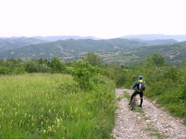 Discesa su forestale verso Morigliassi