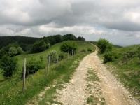 Monte Bagnolo - in direzione del Colle della Seppia