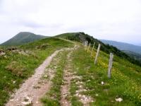 Strada per il Monte Ebro