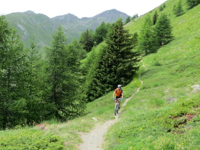 Il single-track che scende dall'Alpe Tsa de la Comba