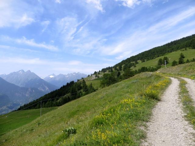 Nei pressi dell'Alpe di Vignon