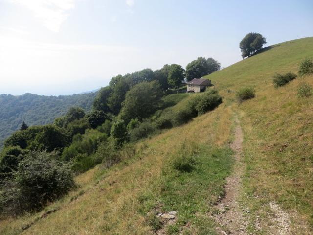 Il largo sentiero che scende alla sella Cavazza dall'Alpe Böcc