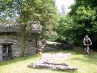 Discesa nel bosco in direzione di Rasa