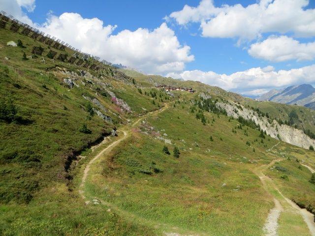 Sentiero di ritorno dall'Aletschbord in direzione della funivia di Belalp, sullo sfondo l'abitato di Bruchegg