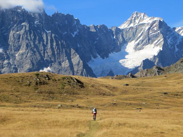 Il sentiero prativo sulla via di ritorno per Cervinia - di fronte il ghiacciaio delle Grandes Murailles