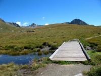 Passerella sul lago verde