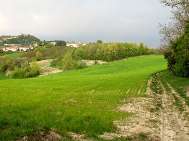 In direzione di Camino
