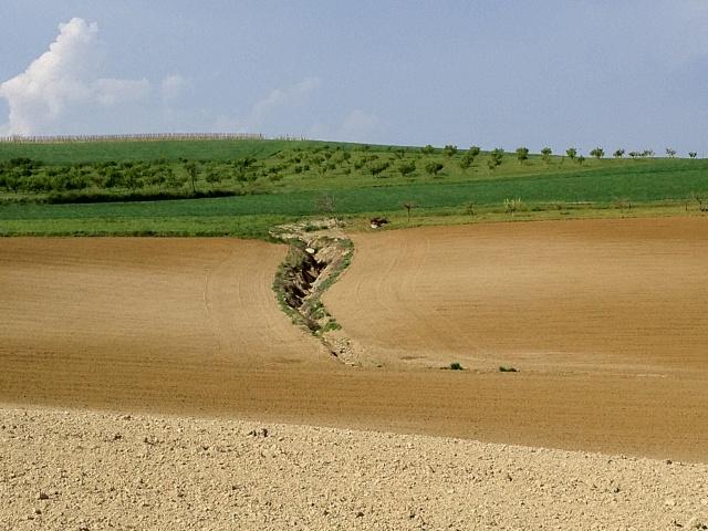 Contrasto cromatico - particolare nel terreno arato