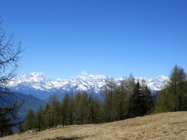 Panorama dalla croce in prossimità della Colma di Craveggia - Gruppo Monte Rosa (sx), gruppo del Mischabel (centro) e Trittico del Sempione (dx)