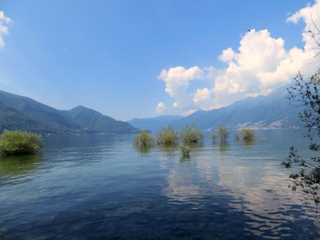 Lago Maggiore dalla sponda di Ascona