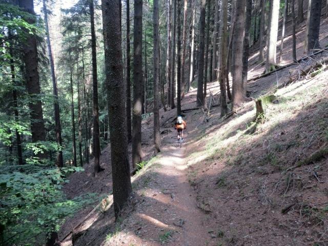 Il bel sentiero che collega l'Alpe Survi con l'Alpe Zota