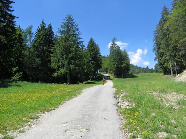 Salita all'Alpe Foppiano