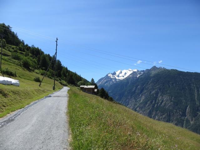 Salita a Riedji, sullo sfondo le prime vette del massiccio del Mischabel, tra cui il Balfrin (3.796) ed il Bigerhorn (3.626)