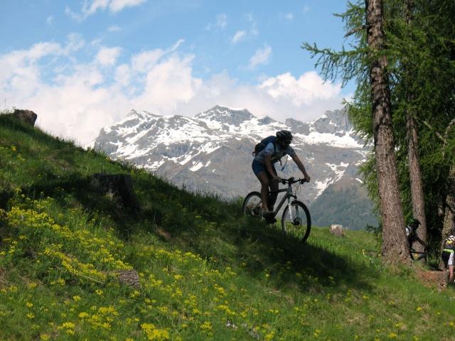 Discesa dall'Alpe Mezzan
