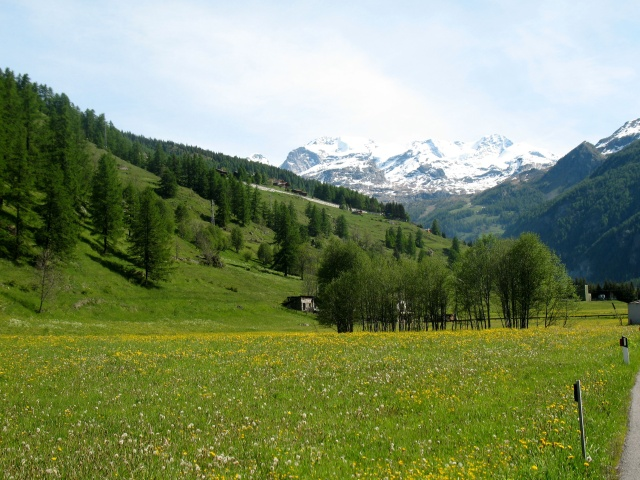 Pilaz - panorama