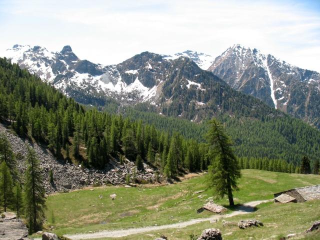 Alpe Saler Inferiore