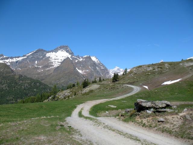 Nei pressi del lago delle rane - alpe Saler inferiore