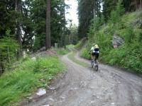 Strada forestale verso l'Europaweg