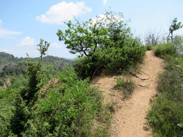 Il sentiero che costeggia il Lago di Ravasanella