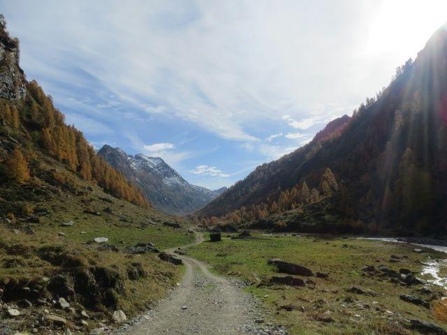 Val di Carassino, sullo sfondo la Cima della Negra