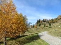 Val di Carassino, nei pressi di Compietto
