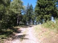 Sterrata verso Monte Spalavera