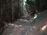 Salita al Monte Pian Bello