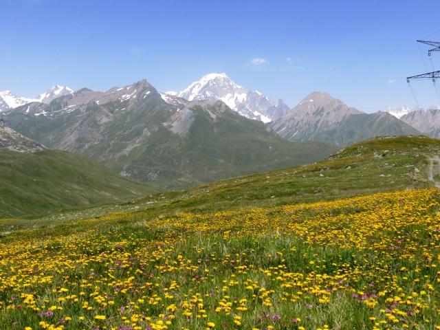 Panorama sul Monte Bianco dai prati circostanti il lago Longet