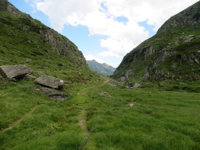Il sentiero che scende dalla diga del Lago  - Alpe Forna