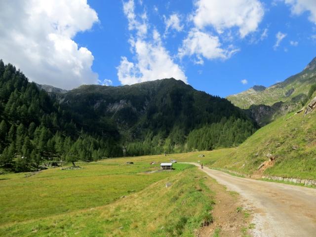 Alpe Campo la Torba