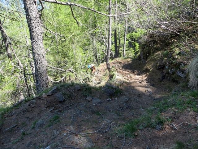 Il sentiero che scende a valle dalla conca del Lago Tremorgio