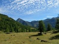 Alpe nei pressi del Furggupass