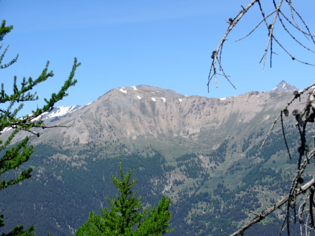Vista sul monte Jafferau dalla Madonna del Cotolivier