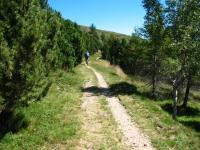 Piandanazzo - inizio del single track in direzione di San Lucio