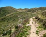 Single track proveniente dall'Alpe di Pietrarossa