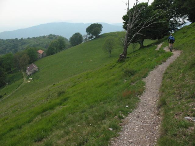 Single track in discesa dal Monte Bisbino seguendo la cresta collinare