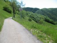 Strada per l'Alpe di Cerano