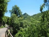 Strada per l'Alpe di Cerano, sullo sfondo il Sasso Gordona