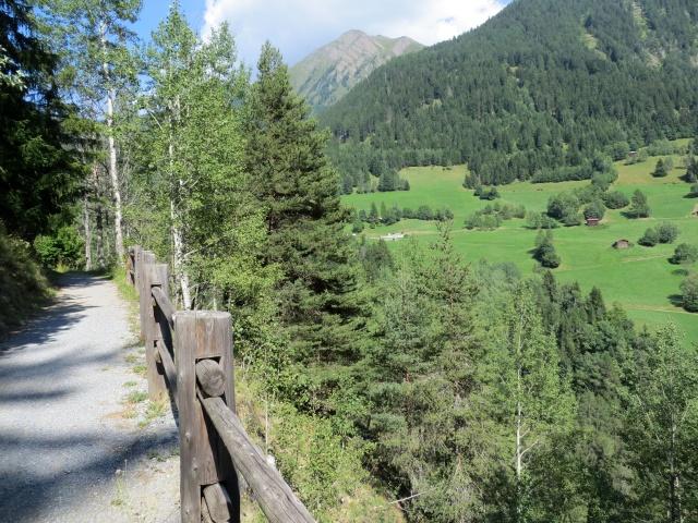 Sentiero per Grengiols, sullo sfondo l'Eggerhorn