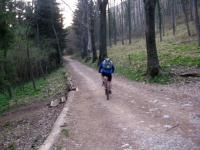 Discesa da Terz'Alpe